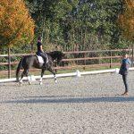 Helen Langehanenberg ging beim Unterricht auf jedes Reiter-Pferd-Paar individuell ein. Foto: PEMAG