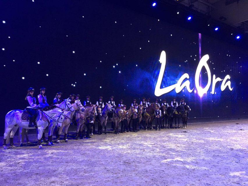 Das Ponyshowteam NRW konnte mit seinem energiegeladenen Programm bereits bei der Hop Top Show auf der EQUITANA gute Stimmung verbreiten. Foto: privat